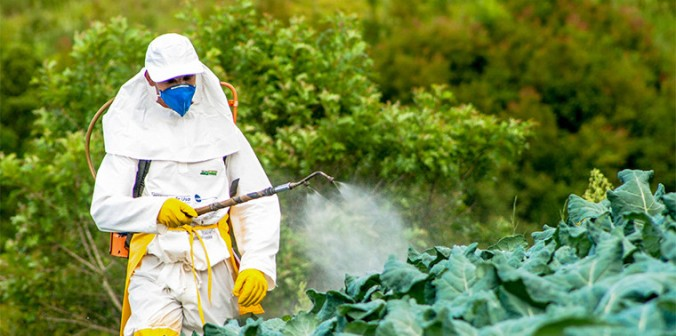 feature_pesticides_main-760x378